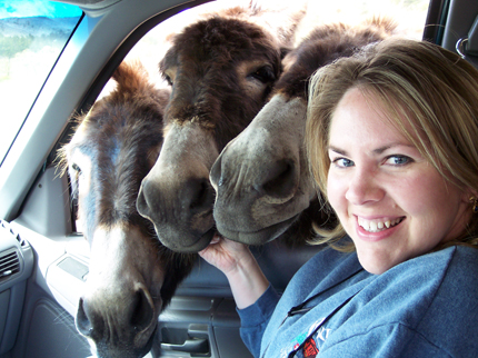 Girl with burros