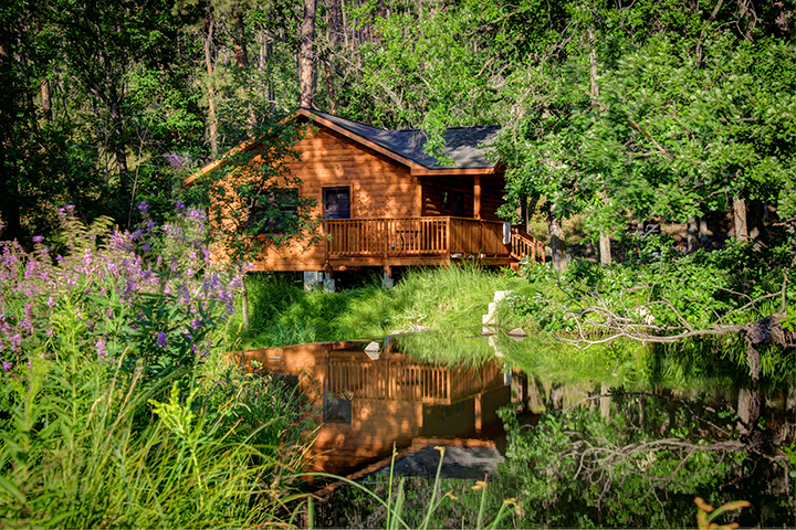 Lover S Leap Cabin 187 Cabins 187 Accommodations 187 State Game